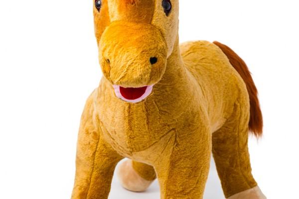 ponyhorse85cm-2